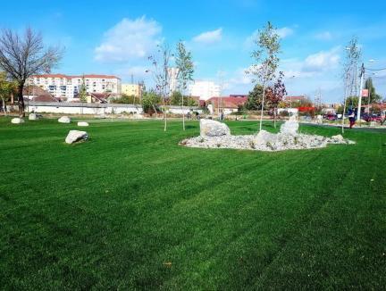 Fostul depozit de fier vechi din strada Oneştilor a devenit... spaţiu verde (FOTO)