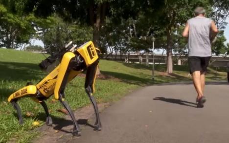 Câini-roboţi le spun oamenilor să păstreze distanţa. Se întâmplă în Singapore (VIDEO)