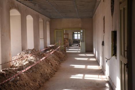 Şantierul din complexul Baroc: Faţadele palatului au fost reabilitate, în grădină se verifică starea de sănătate a copacilor (FOTO / VIDEO)