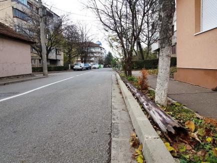 Ne enervează: Un stâlp de telefonie prăbuşit pe strada Traian Lalescu din Oradea stă abandonat de o săptămână