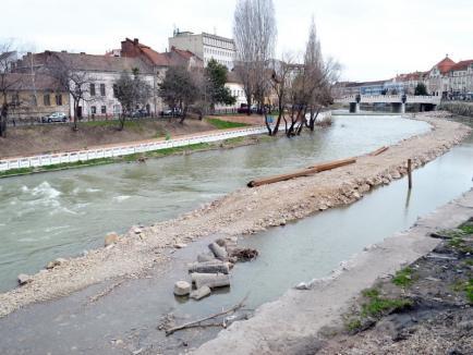 Nu e de acum! Primăria Oradea susţine că stâlpii Vágó zac în Crişul Repede de... 15 ani