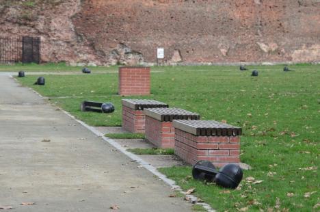 30.000 lei pagubă: Doi drogaţi au distrus 20 de stâlpi de iluminat din şanţul Cetăţii (FOTO)