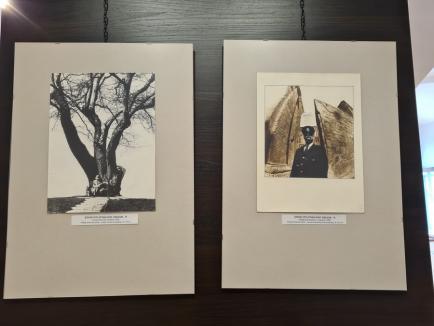 70 de viață, 50 de artă: Expoziție cu fotografii realizate în cinci decenii de fotograful Ștefan Tóth, vernisată în Cetate (FOTO / VIDEO)