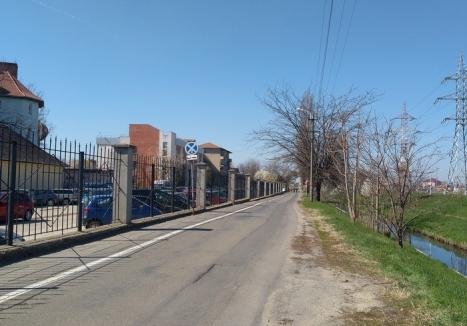 Ok pentru tramvai: Universitatea îi dă Primăriei teren pentru construirea noii linii de tramvai de pe malul Peţei