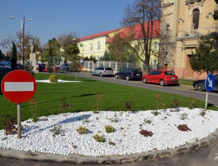 Premiu de 17.000 lei pentru cea mai bună soluţie de amenajare a statuii Rimanoczy Kálmán