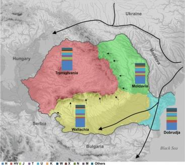Studiu ştiinţific: Transilvănenii au ADN 'de Europa', iar răgăţenii şi moldovenii 'de Balcani'