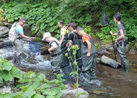Aqua Crisius va organiza noi tabere Junior Ranger, dar și o tură cu canoe pe Crișul Negru