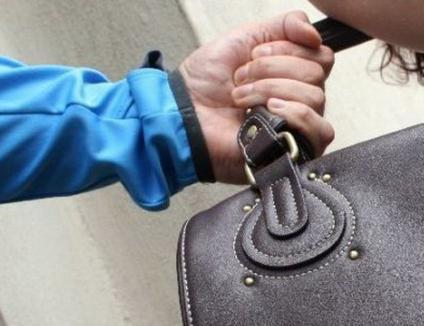 Tâlhărie în plină zi în Alparea: o femeie a fost atacată într-un parc şi a rămas fără portmoneu