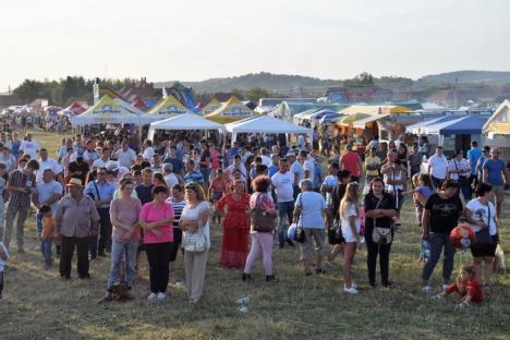 """Prima ediţie a """"Târgului Corvinilor - Târgul de 500 de Ani"""", de la Lugașu de Jos, a strâns peste 10.000 de vizitatori (FOTO)"""