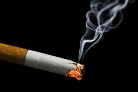 Atac la legea care interzice fumatul: 33 de senatori au sesizat Curtea Constituţională pe motiv de discriminare