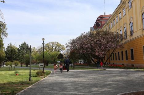 Grădinăreasa Palatului: La doar 22 de ani, Timea Kleszken este grădinăreasa celui mai frumos parc din Oradea (FOTO)