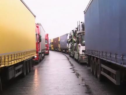 Partidul e-n toate: Blocaje în vămi, după ultimatumul dat de Dragnea pe tema importurilor de legume și fructe 'de contrabandă'