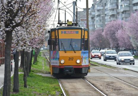 Program special de 1 mai: Tramvaiele şi autobuzele vor circula după program special luni şi marţi