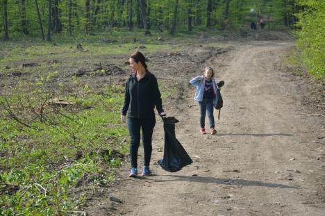 Duminica altfel: Mai mulţi voluntari au strâns gunoaiele dintr-o pădure de la marginea Oradiei. S-a umplut o camionetă! (FOTO)
