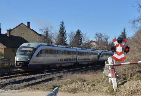 Amar de Centenar: Primăria Oradea nu a găsit doritori pentru trenul de 1 Decembrie către Alba Iulia