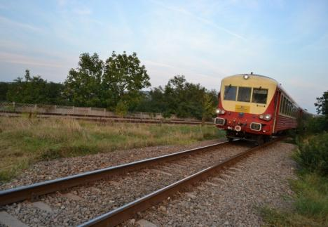 Sfârşit oribil, la Săcueni: A vrut să se spânzure, nu a reuşit, şi s-a aruncat în faţa trenului