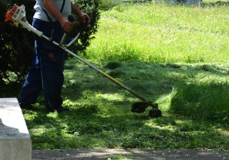 ADP Oradea caută muncitori necalificați pentru curățenie