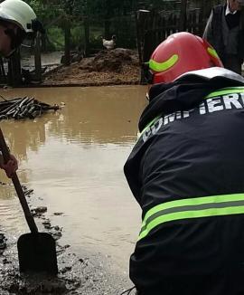 Case, curţi şi beciuri inundate: Pompierii bihoreni au intervenit în satele Ursad şi Petid (FOTO / VIDEO)