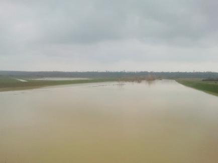 Cod galben de inundaţii pe râurile Holod, Crişul Negru şi Crişul Alb