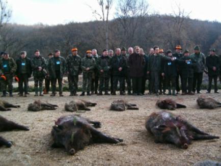 Ecologiştii: Vânătoarea de la Balc e un carnagiu!