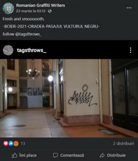 A vandalizat Palatul Vulturul Negru și se mândrește cu asta pe internet! (FOTO)