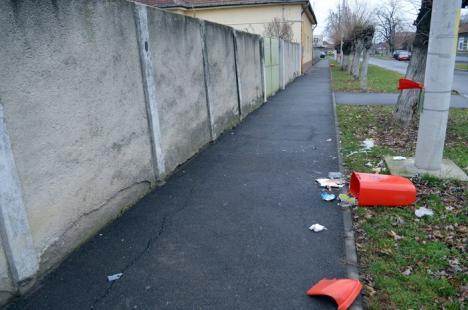 Vandali în noaptea de Revelion: Persoane rămase încă neidentificate au spart 9 coşuri stradale (FOTO)