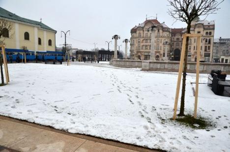 Au distrus gazonul! Piaţa Unirii a fost vandalizată încă înainte de a fi reabilitată integral (FOTO)