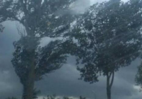 Alertă meteo imediată, în Bihor: Vântul va atinge 65 km/h. Vezi localităţile afectate!