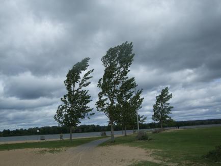 Avertizare meteo imediată: Cod galben în Bihor, vântul va depăşi 60 km pe oră! Lista localităţilor afectate