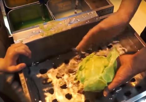 Varza din plastic (VIDEO)