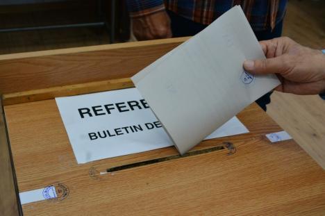 Merg oamenii la vot! Vezi prezenţa la urne în ţară şi în Bihor la europarlamentare şi referendum