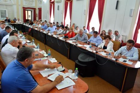 Majoritate neputincioasă: Puterea din Consiliul Judeţean Bihor nu poate pune în aplicare proiectul pentru modernizarea scenei Teatrului