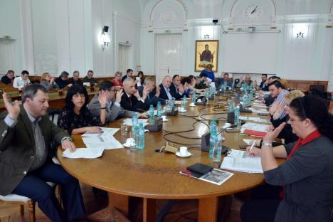 Bugetul Oradiei a fost rectificat pentru a finanţa noile drumuri de Sîntandrei şi Podgoria