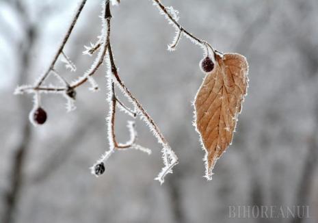 Vreme la extreme: Temperaturi deosebit de reci, inclusiv în Bihor. De duminică, vremea se încălzeşte accentuat
