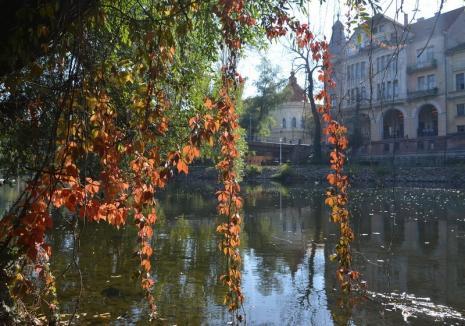 Vine toamna sau nu în Bihor? Cum va fi vremea în următoarele două săptămâni