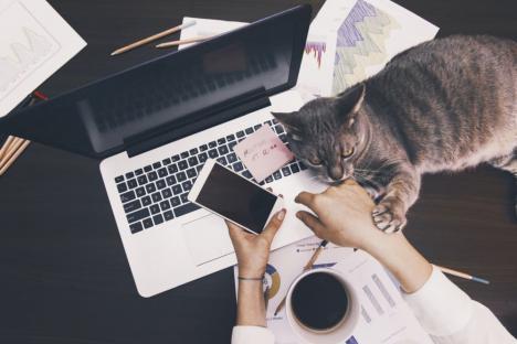Ai lucrat de-acasă în starea de urgenţă? Poți cere bani de la Guvern pentru laptop-uri, tablete, telefoane sau licenţe IT
