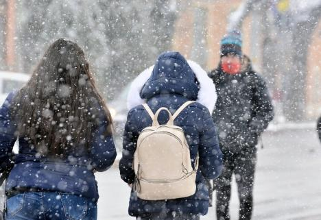 Iarna nu se lasă! Cod galben de ninsori, vânt şi viscol, inclusiv în Bihor