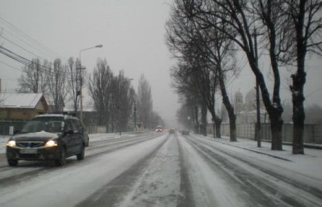 A căzut prima ninsoare în Bihor!