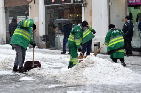 Ninsoare la Oradea. RER Ecologic Service a scos pe străzi 16 utilaje (FOTO)