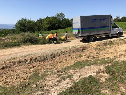 Trimestrial, ZAPDECO Oradea colectează deşeurile reciclabile şi curăţă întreaga rază a comunei Pomezeu (FOTO)