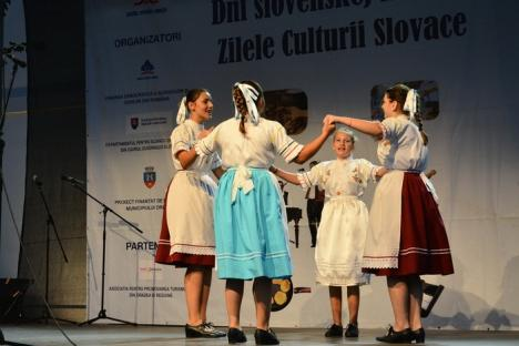 Limba slovacă se va preda și la Universitatea din Oradea