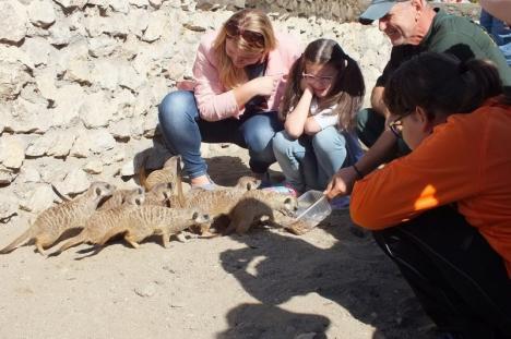 Ziua părinţilor adoptivi la Zoo Oradea