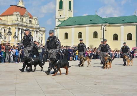 """Acţiuni spectaculoase în Cetate de Ziua Poliţiei: Jocuri, concursuri, expoziţii, demonstraţii ale """"mascaţilor"""" şi ale câinilor poliţişti"""