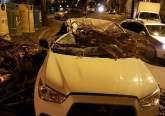 Vântul a făcut pagube la Oradea: Maşini distruse de copaci doborâţi de vijelie şi de bucăţi de construcţie desprinse dintr-o clădire, pe strada Republicii (FOTO)
