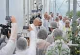 Investiţie de peste 700.000 euro. Prima seră hidroponică de roşii cherry din Bihor a fost inaugurată la Toboliu (FOTO)
