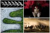 'Best club' în Brazilia: Salonul Foto Varadinum din Oradea a primit o nouă distincţie la nivel internaţional (FOTO)