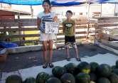 Primii pepeni de anul acesta au apărut în pieţele orădene (FOTO)