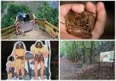 """Primii paşi, departe de oraş: Bihorenii, ademeniţi în Pădurea Craiului cu poteci turistice, inclusiv în """"casa racului bihorean"""""""