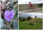 Cu biţa pe Muntele Şes. Ecotop Oradea a amenajat opt trasee de vizitare cu bicicleta într-o arie protejată (FOTO)