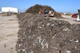 Bio până la capăt! Colectate separat de orădeni, biodeşeurile se transformă în îngrăşământ pentru flori (FOTO)